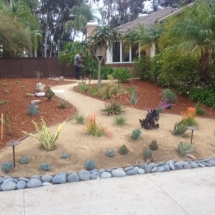 Drought Tolerant After